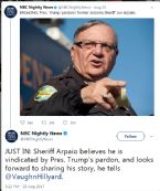 JOE ARPAIO TRUMP PARDON