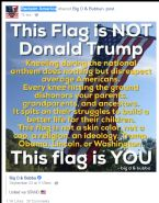 THIS FLAG IS NOT DONALD TRUMP