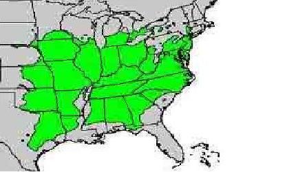 Iodine Deficient Soils In The U S The Quot Goiter Belt Quot At