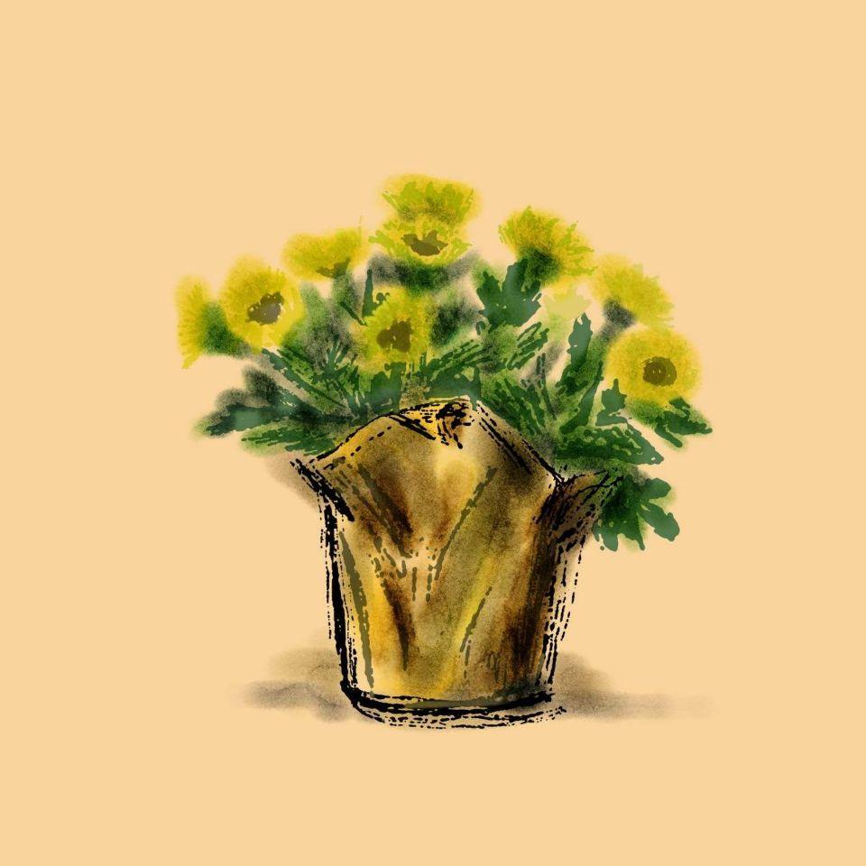 http://curezone.com/upload/art/graphics/sunflower.JPG