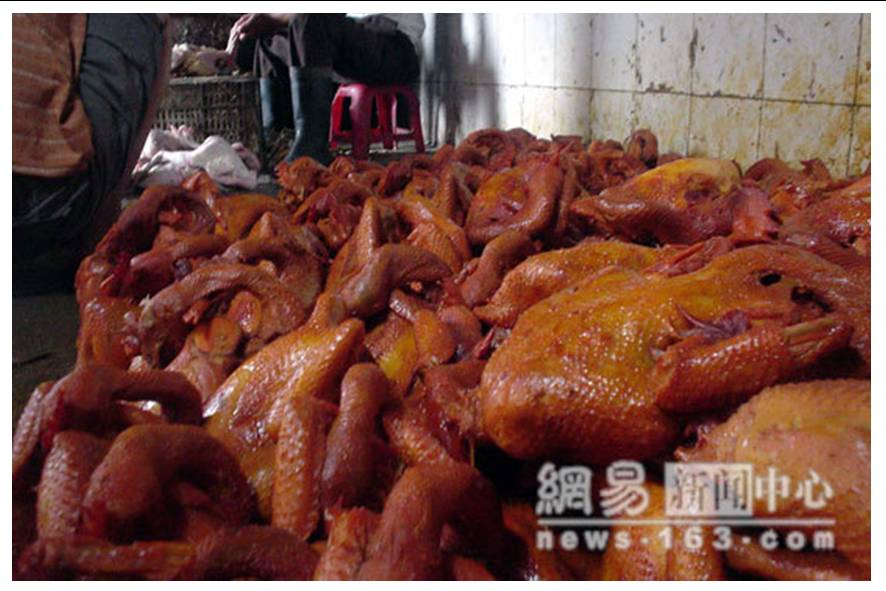 http://curezone.com/upload/blogs/animal_cruilty/Chicken_in_China13.jpg