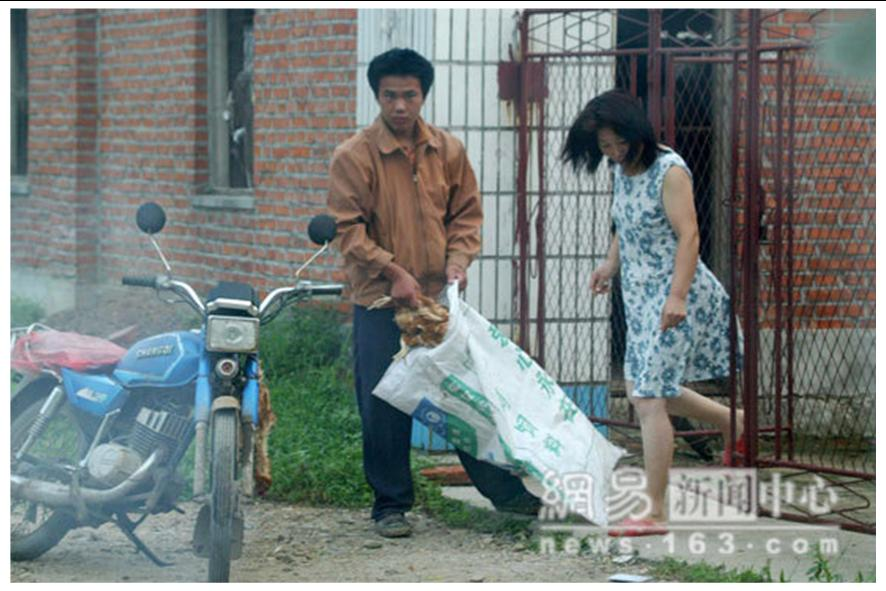 http://curezone.com/upload/blogs/animal_cruilty/Chicken_in_China3.jpg