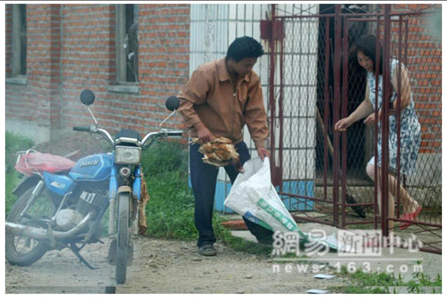 http://curezone.com/upload/blogs/animal_cruilty/Chicken_in_China4.jpg