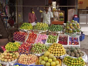 http://curezone.com/upload/blogs/new/vibr8/India0030.jpg