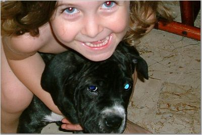 Lakota Mastino Puppy and Princess Aurora