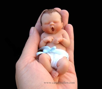 Amazing Miniature Babies by Camille Allen